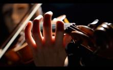 Sonate de l'Étranger (2014)